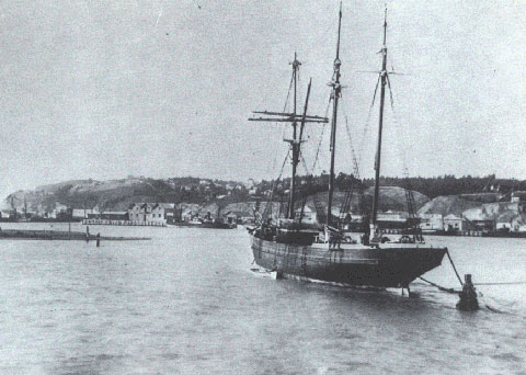 Napier Harbour, New Zealand, looking towards Ahuriri, 1881
